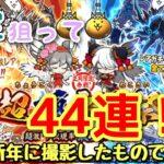 にゃんこ大戦争#23  新年最初の神ガチャ!!超極猫祭を44連引いていく!!【にゃんこ大戦争】