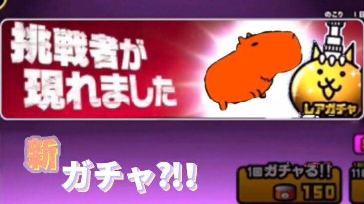 新ガチャ引いてみた!【ネタ】【にゃんこ大戦争】