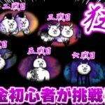 【にゃんこ大戦争】初心者が狂乱ステージに挑戦!六戦!【ゆっくり実況】